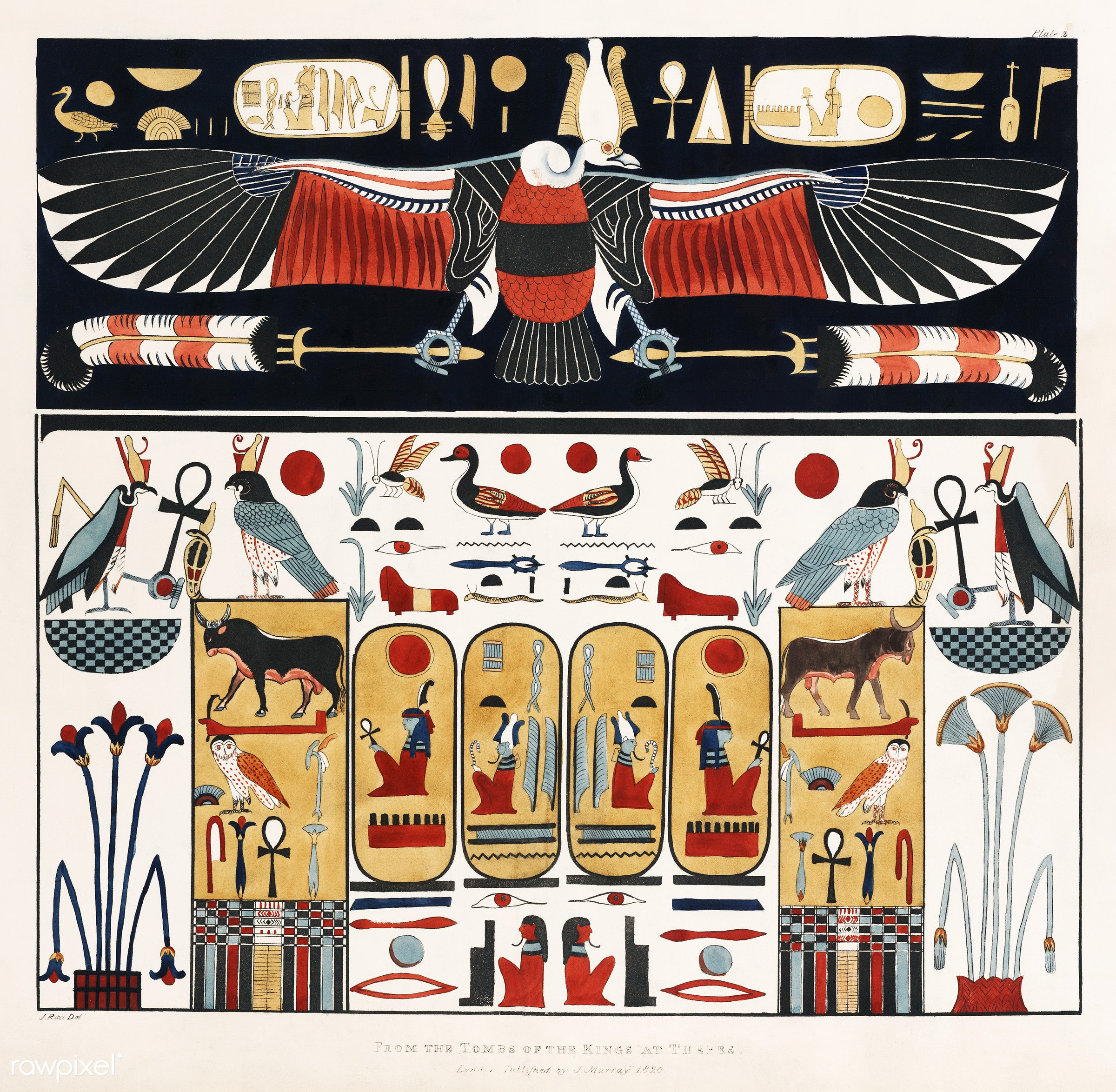 Upper part represents the Eagle illustration from the kings tombs in Thebes by Giovanni Battista Belzoni (1778-1823) from...