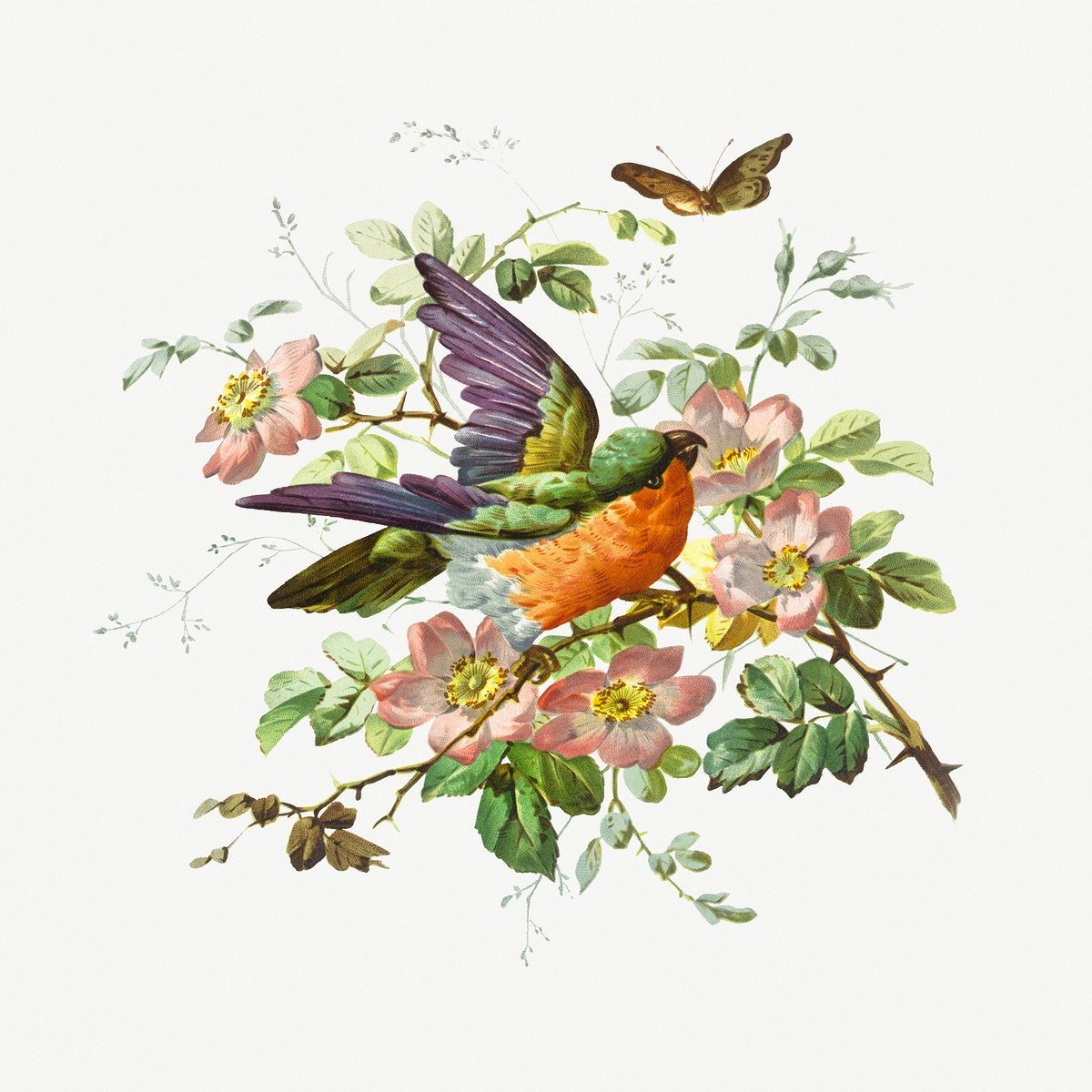 Birthday card illustration of decorative birds, flowers, and butterflies
