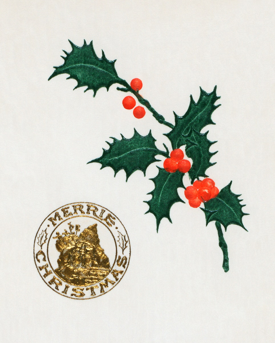 Christmas dinner menu with holly leaves (1899) from The Buttolph collection of menus. Original From The New York Public…