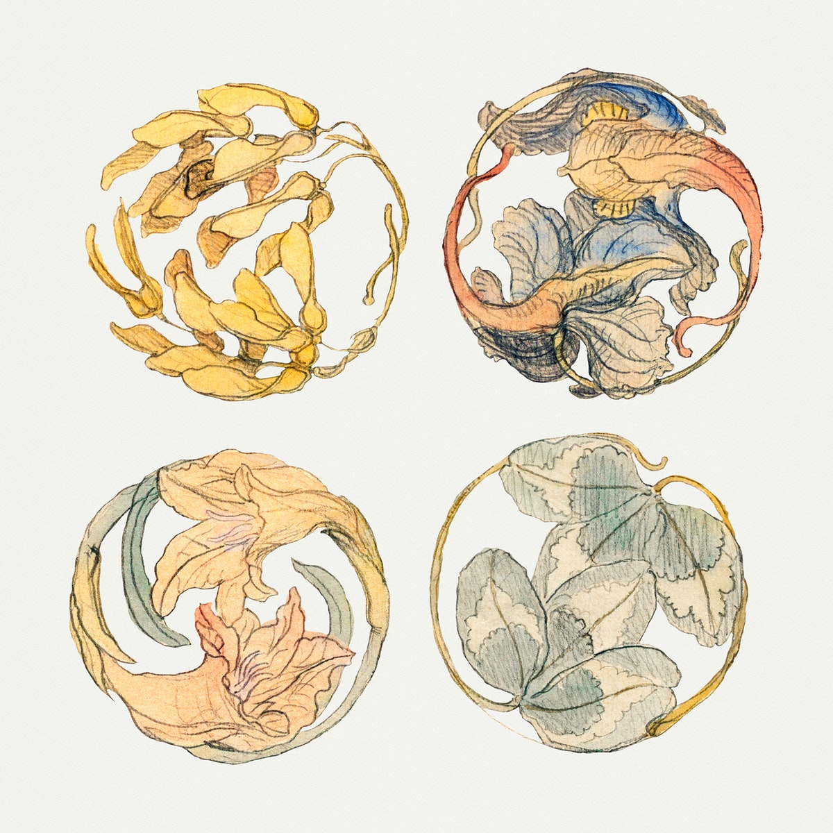 Flower Studies (Four Designs for Circular Ornaments) (1880–1890) by Samuel Colman. Original from The Smithsonian…
