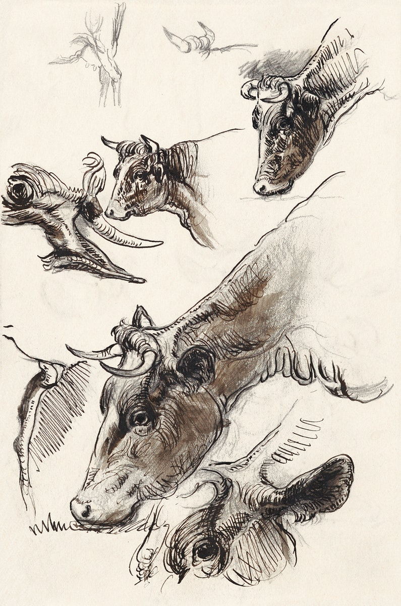 Sketches of Cattle, Irvington (September 1876) by Samuel Colman. Original from The Smithsonian Institution. Digitally…