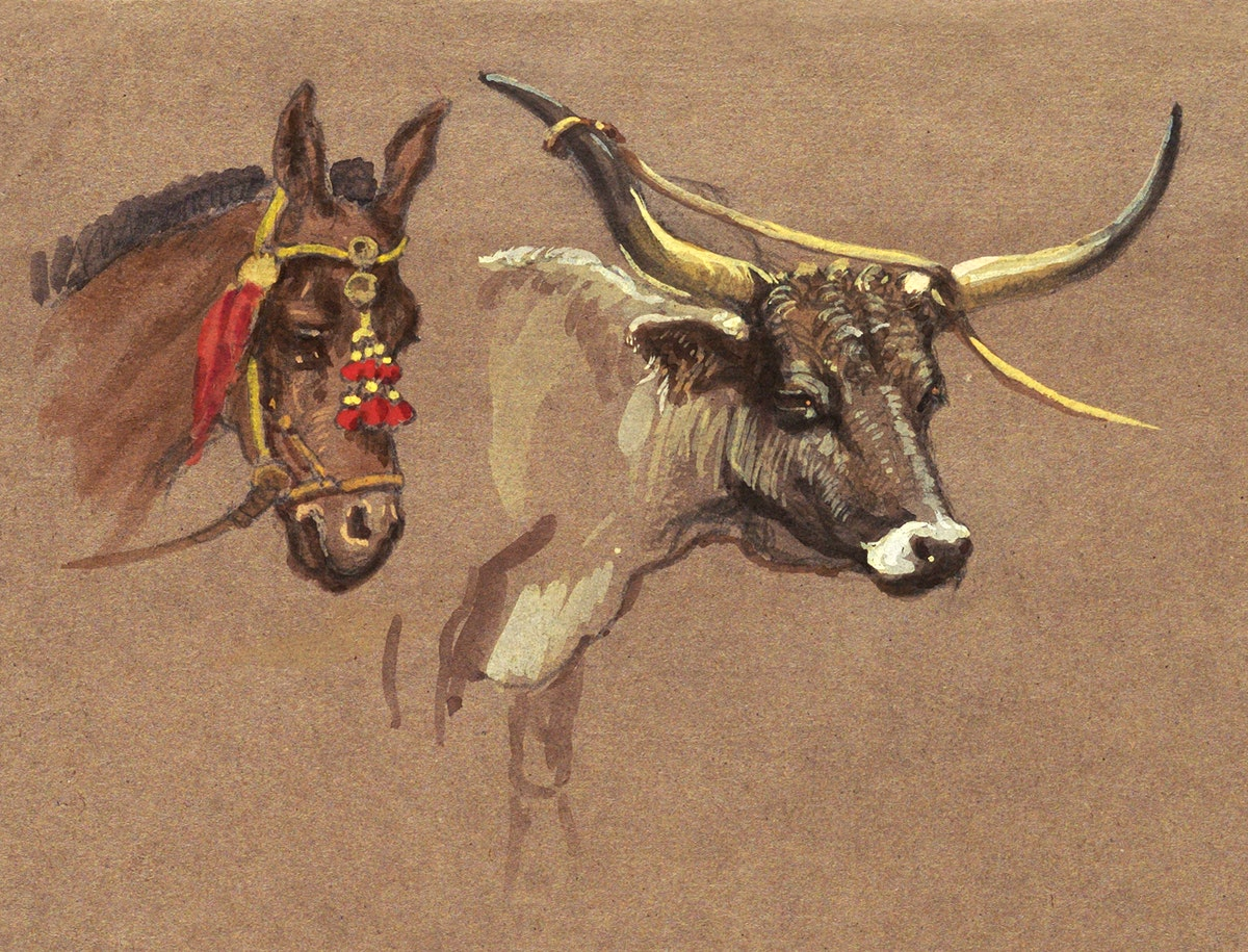 Head of a Mule with a Bridle, Head of a Buffalo or Ox (1872–1873) by Samuel Colman. Original from The Smithsonian…