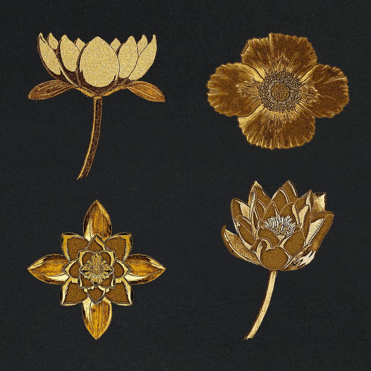 Vintage gold water lily and poppy flower illustration set design element