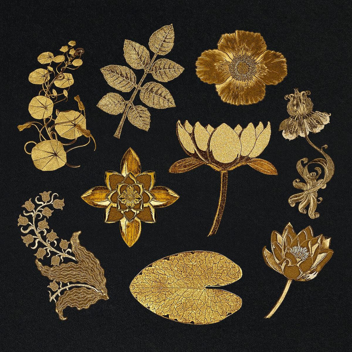Vintage gold flower and leaf illustration design element set