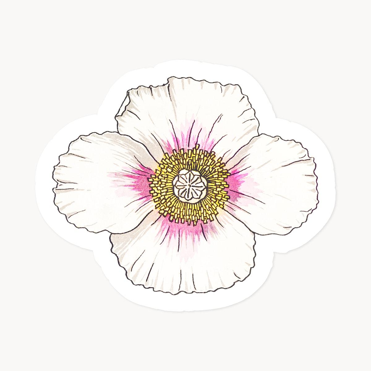 Vintage poppy flower sticker with white border design element