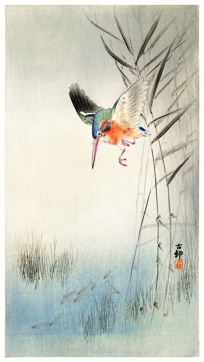 Kingfisher hunting for fish in the water (1900) by Ohara Koson (1877-1945). Original from The Rijksmuseum. Digitally enhanced…
