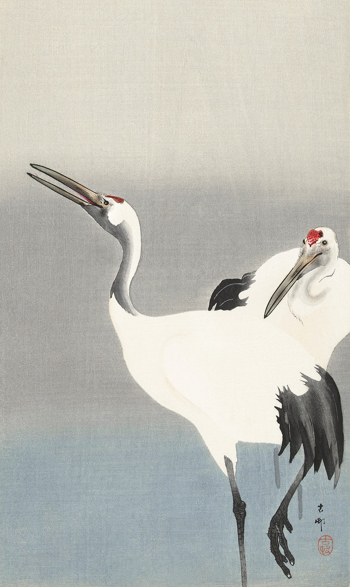 Two cranes (1900-1930) by Ohara Koson (1877-1945). Original from The Rijksmuseum. Digitally enhanced by rawpixel.