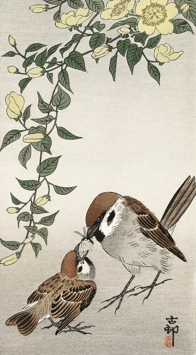 Birds and plants (1900 - 1936) by Ohara Koson (1877-1945). Original from The Rijksmuseum. Digitally enhanced by rawpixel.