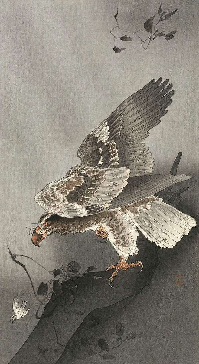 Eagle lurking at a prey (1877-1930) by Ohara Koson (1877-1945). Original from The Rijksmuseum. Digitally enhanced by…