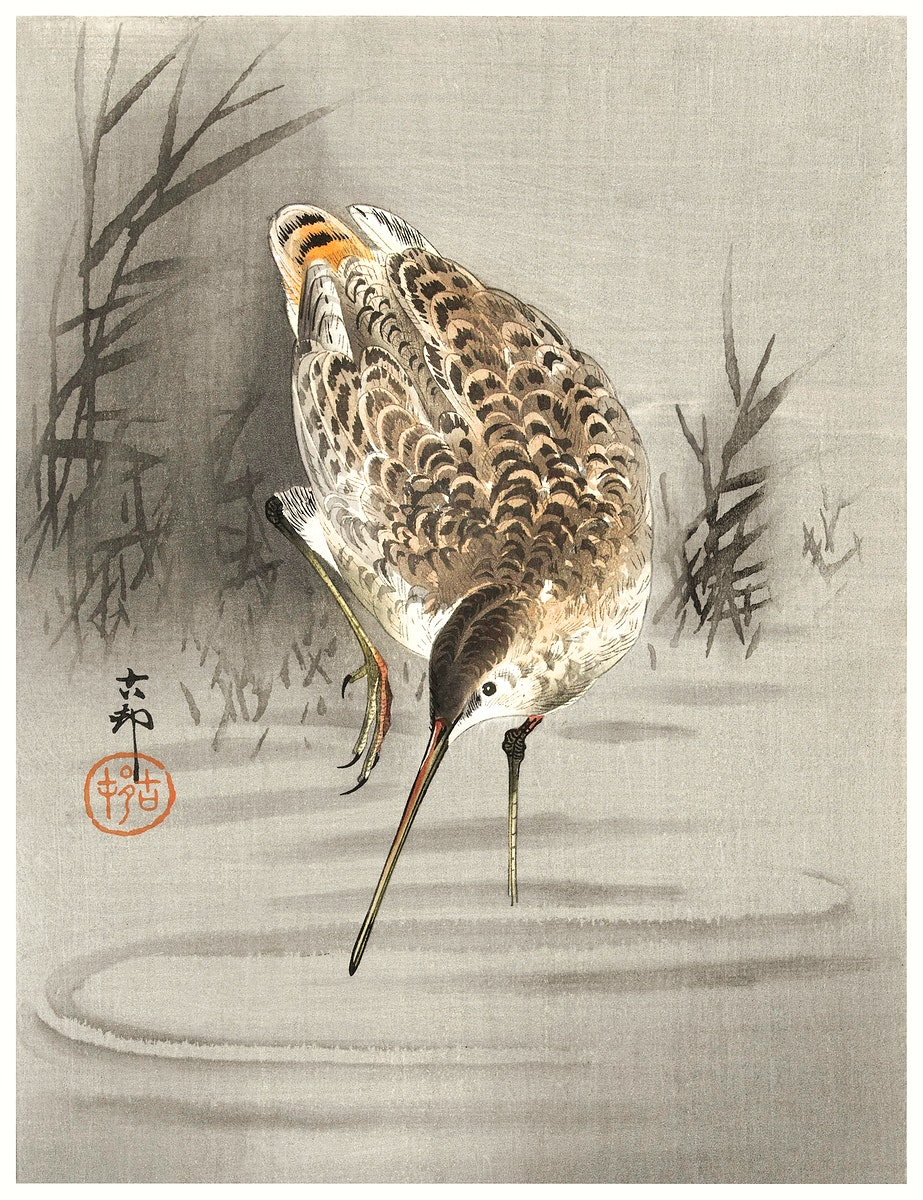 Snip in the water (1900 - 1930) by Ohara Koson (1877-1945). Original from The Rijksmuseum. Digitally enhanced by rawpixel.