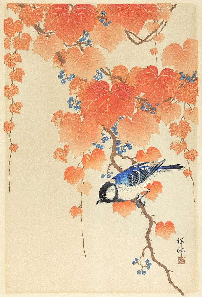 Great tit on paulownia branch (1925 - 1936) by Ohara Koson (1877-1945). Original from The Rijksmuseum. Digitally enhanced by…