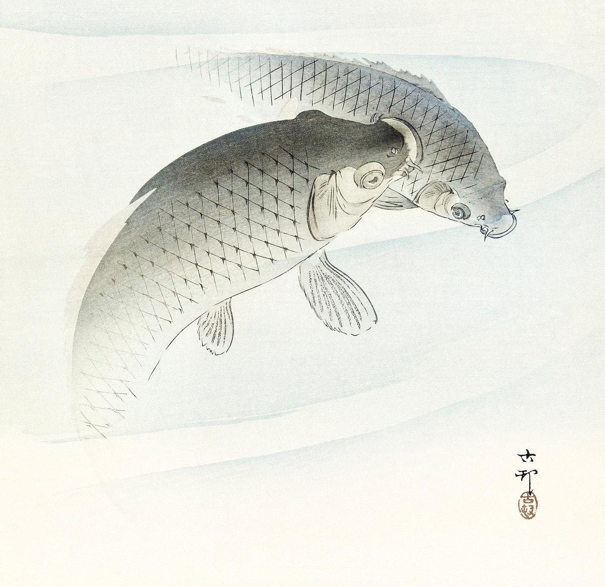 Two carp fish (1900 - 1910) by Ohara Koson (1877-1945). Original from The Rijksmuseum. Digitally enhanced by rawpixel.