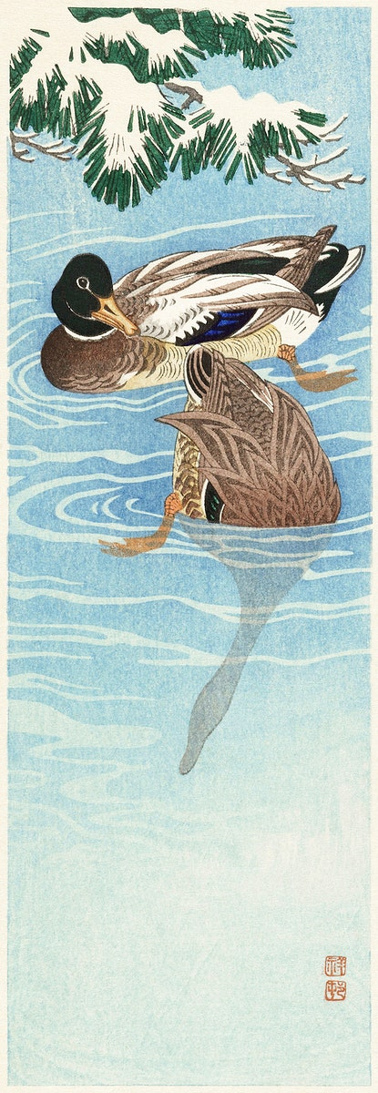 Couple of ducks in the water (1925 - 1936) by Ohara Koson (1877-1945). Original from The Rijksmuseum. Digitally enhanced by…