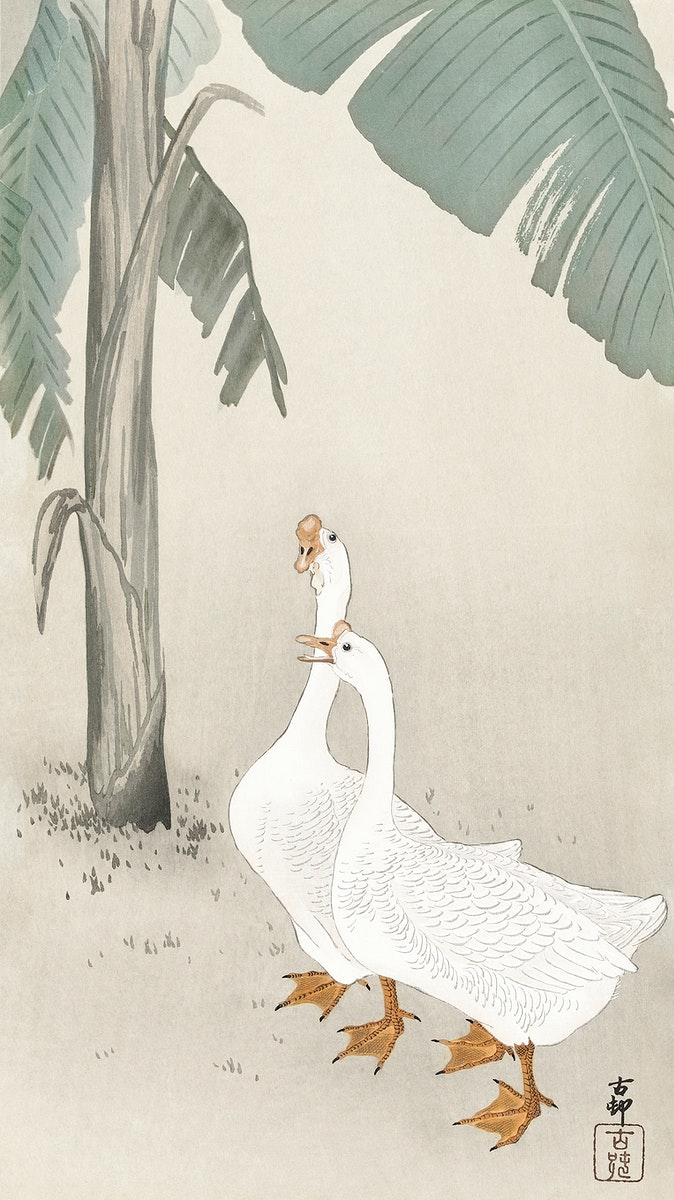 Two geese at banana tree (1900 - 1945) by Ohara Koson (1877-1945). Original from The Rijksmuseum. Digitally enhanced by…