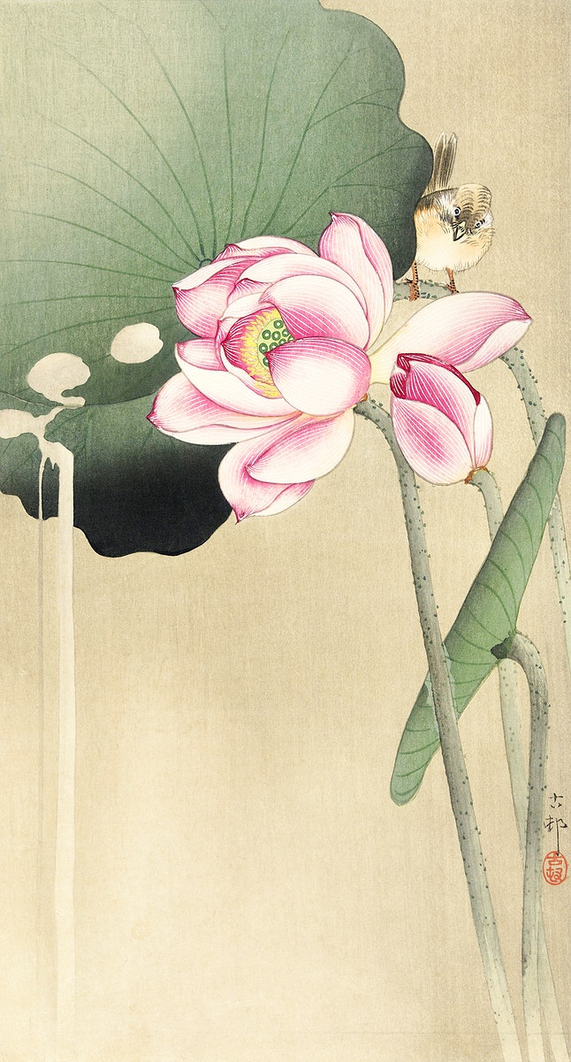 Songbird and Lotus (1900 - 1936) by Ohara Koson (1877-1945). Original from The Rijksmuseum. Digitally enhanced by rawpixel.