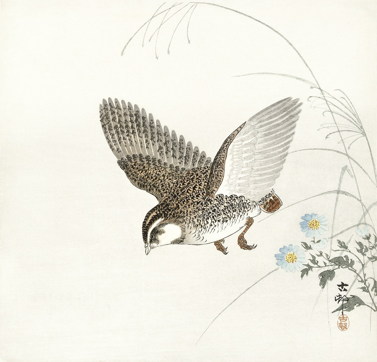 Flying quail (1900 - 1930) by Ohara Koson (1877-1945). Original from The Rijksmuseum. Digitally enhanced by rawpixel.