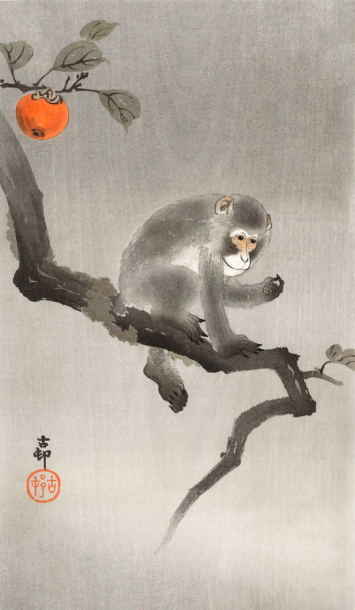 Monkey in cockatoo (1900 - 1930) by Ohara Koson (1877-1945). Original from The Rijksmuseum. Digitally enhanced by rawpixel.