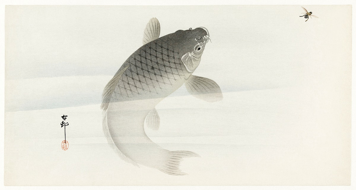 Carp and fly (1900 - 1930) by Ohara Koson (1877-1945). Original from The Rijksmuseum. Digitally enhanced by rawpixel.