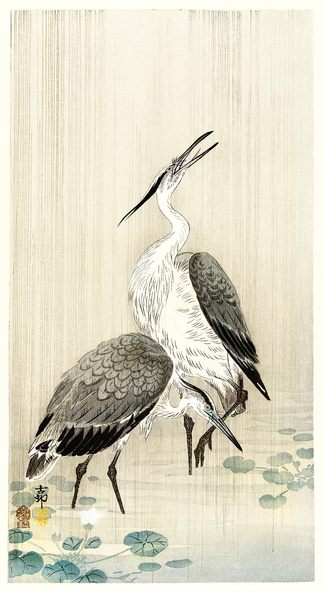 Two herons in the rain (1900 - 1910) by Ohara Koson (1877-1945). Original from The Rijksmuseum. Digitally enhanced by…