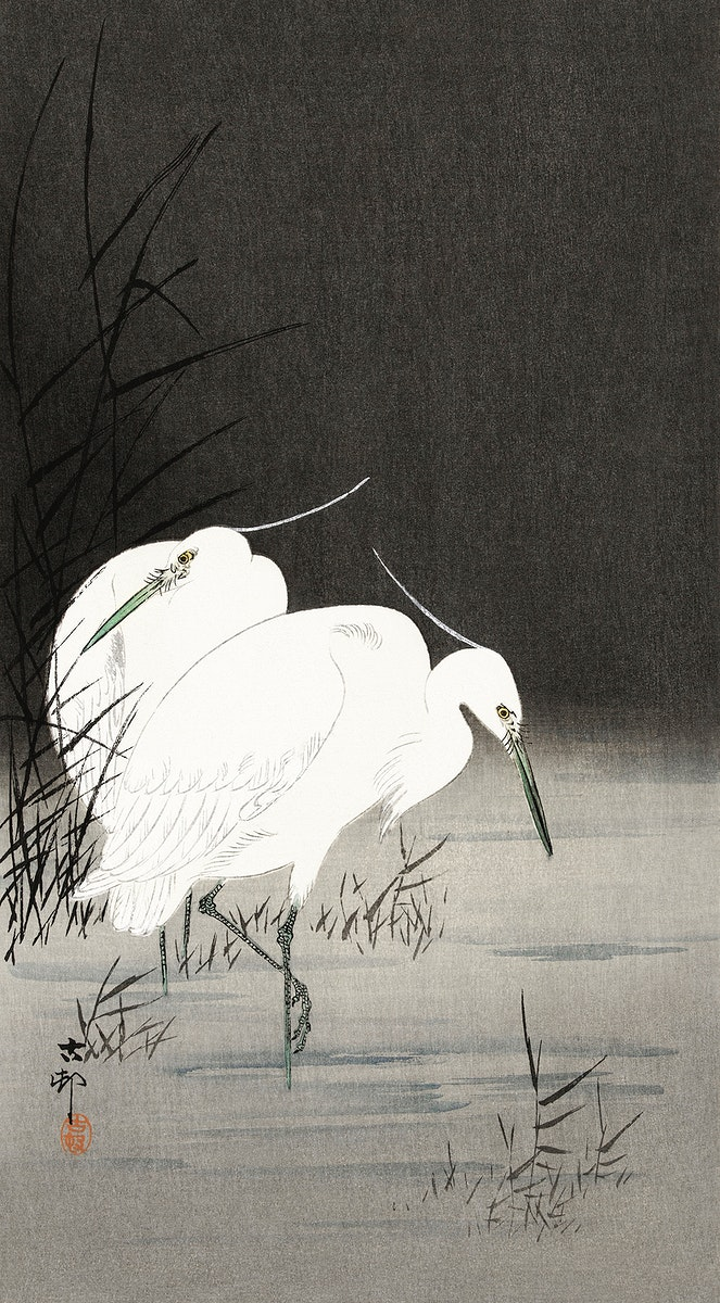 Two egrets in the reeds (1900 - 1930) by Ohara Koson (1877-1945). Original from The Rijksmuseum. Digitally enhanced by…