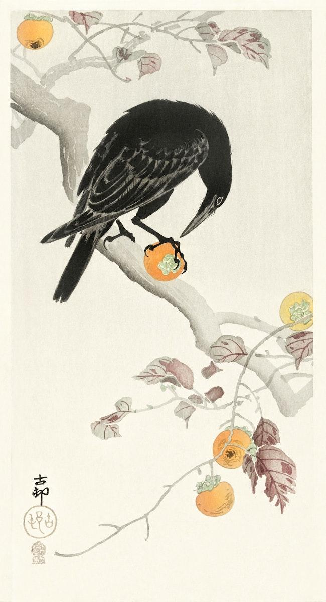 Crow with kaki fruit (1900 - 1910) by Ohara Koson (1877-1945). Original from The Rijksmuseum. Digitally enhanced by rawpixel.