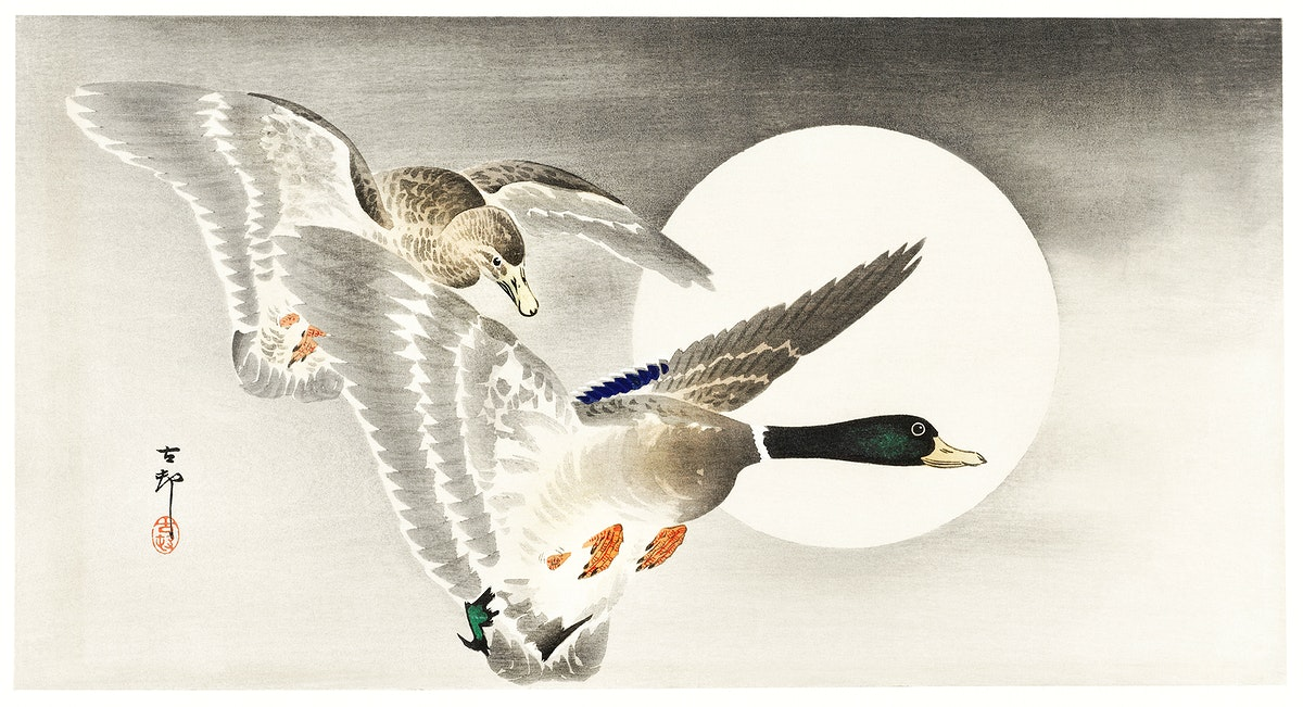 Two ducks at full moon (1900 - 1930) by Ohara Koson (1877-1945). Original from The Rijksmuseum. Digitally enhanced by…