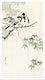 """Great tits on maple branch (1900 - 1936) by <a href=""""https://www.rawpixel.com/search/Ohara%20Koson?sort=curated&amp;page=1"""">Ohara Koson</a> (1877-1945). Original from The Rijksmuseum. Digitally enhanced by rawpixel."""