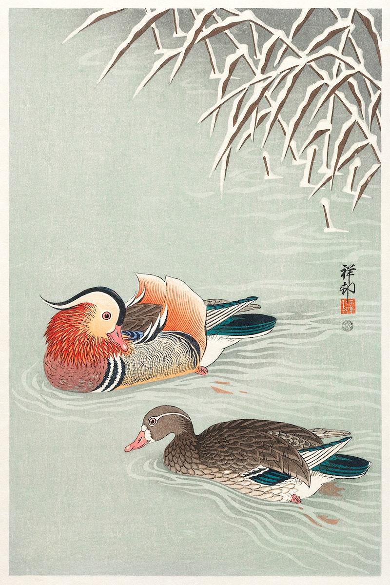 Mandarin ducks (1925 - 1936) by Ohara Koson (1877-1945). Original from The Rijksmuseum. Digitally enhanced by rawpixel.