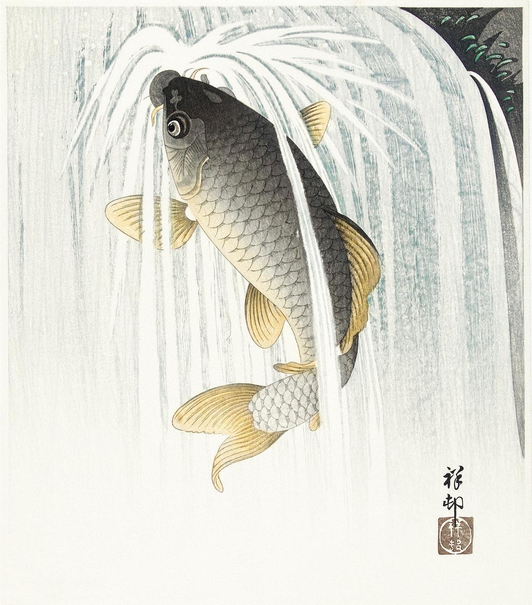 Carp (1935) by Ohara Koson (1877-1945). Original from The Rijksmuseum. Digitally enhanced by rawpixel.