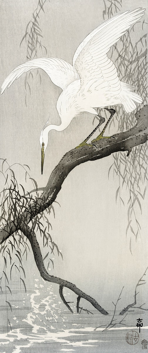 White heron on tree branch (1900 - 1910) by Ohara Koson (1877-1945). Original from The Rijksmuseum. Digitally enhanced by…