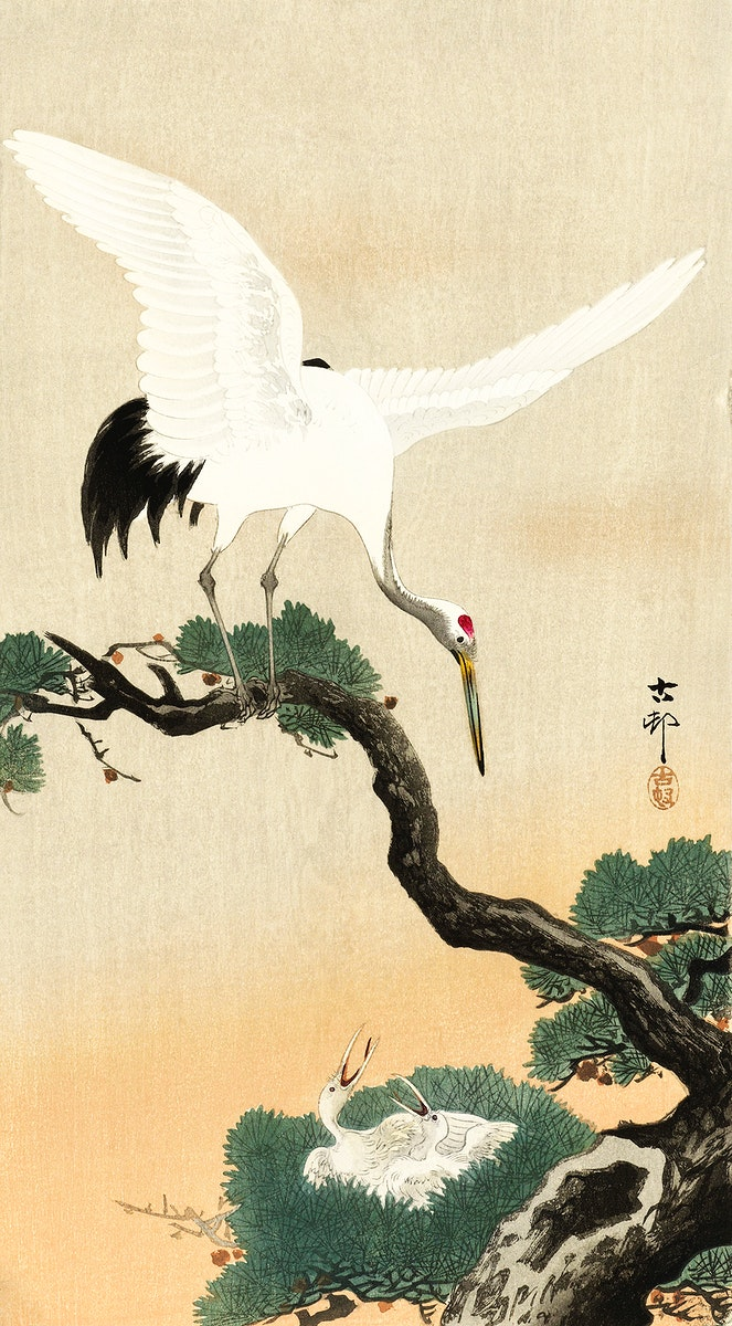 Japanese crane bird on branch of pine (1900 - 1930) by Ohara Koson (1877-1945). Original from The Rijksmuseum. Digitally…