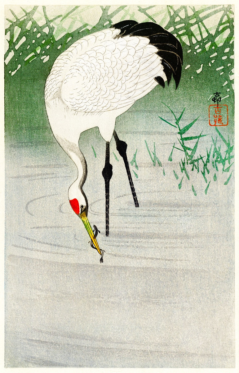 Fishing crane in shallow water (1900 - 1945) by Ohara Koson (1877-1945). Original from The Rijksmuseum. Digitally enhanced by…