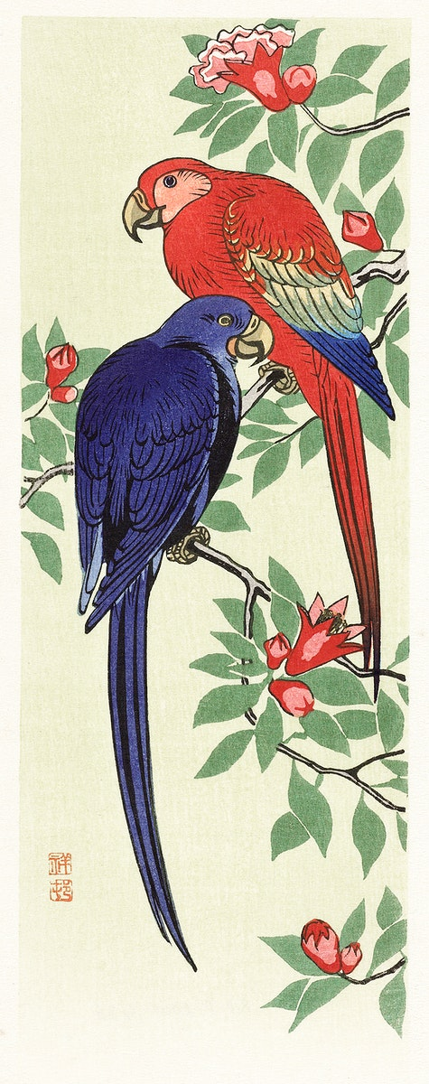 Red and a blue parrot (1925 - 1936) by Ohara Koson (1877-1945). Original from The Rijksmuseum. Digitally enhanced by…