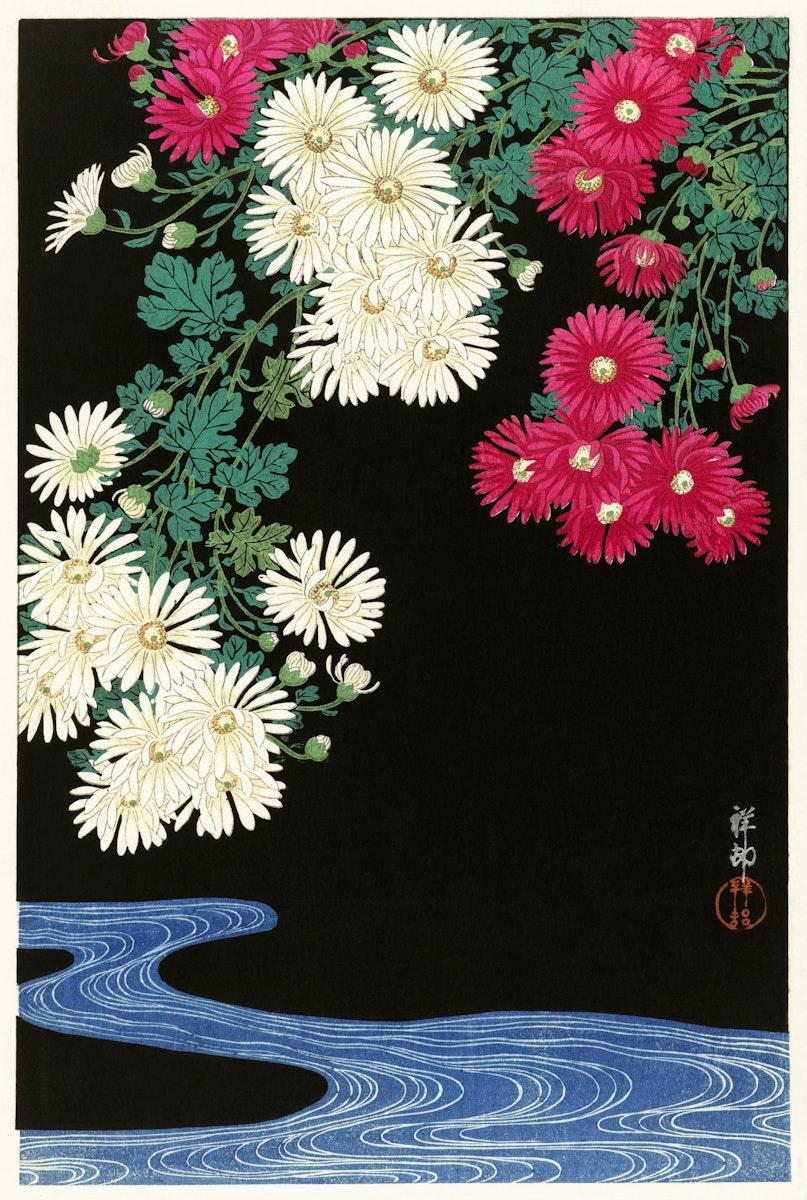 Chrysanthemums (1925-1936) by Ohara Koson (1877-1945). Original from The Rijksmuseum. Digitally enhanced by rawpixel.