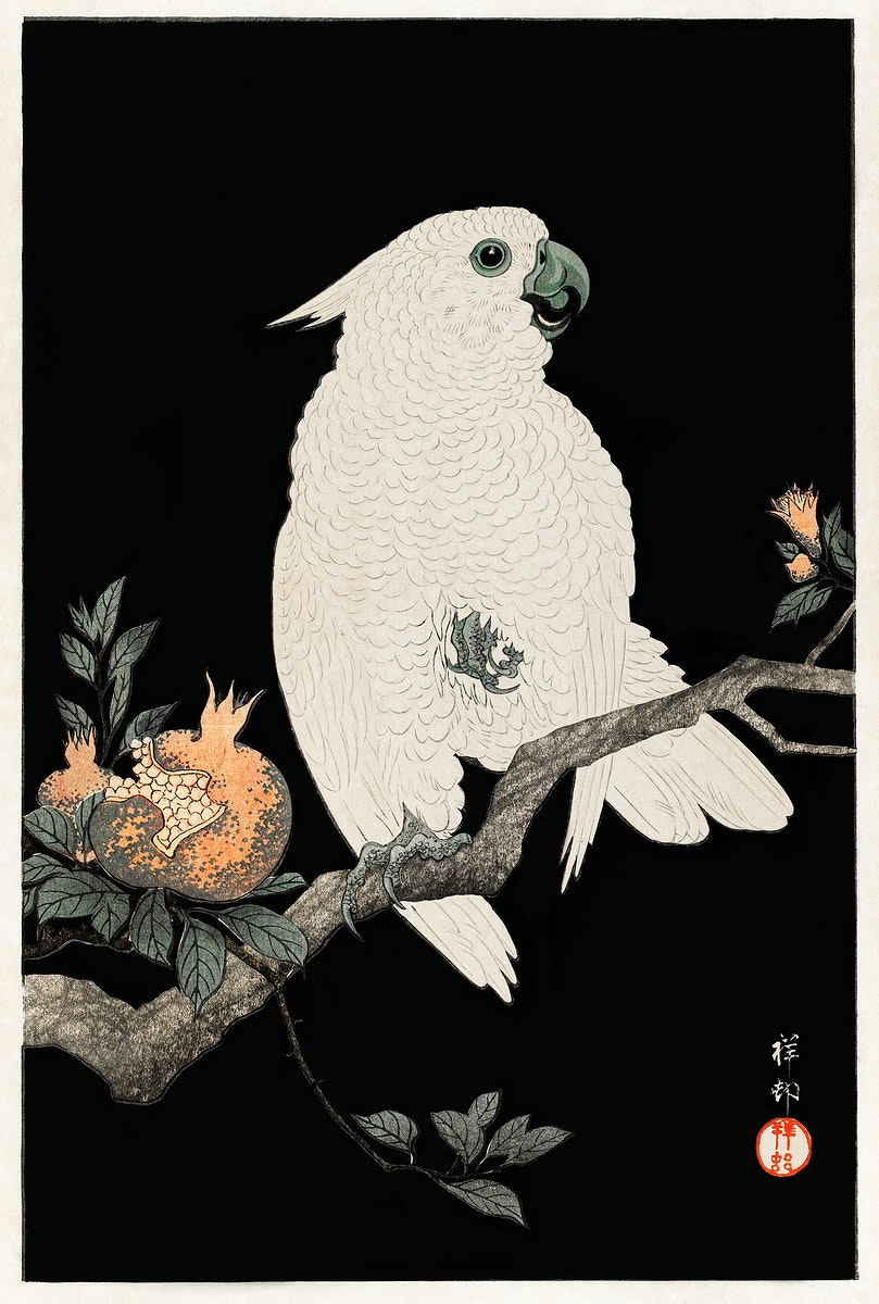 Cockatoo with pomegranate (1927) by Ohara Koson (1877-1945). Original from The Rijksmuseum. Digitally enhanced by rawpixel.