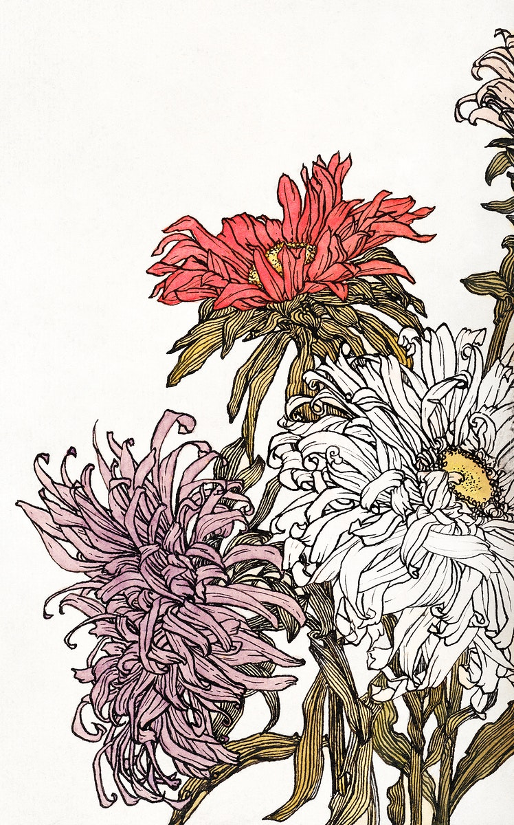 Chrysanthemums by Julie de Graag (1877-1924). Original from The Rijksmuseum. Digitally enhanced by rawpixel.