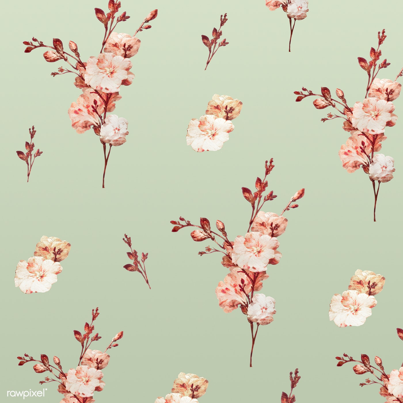 Vintage Floral Seamless Pattern Royalty Free Illustration 2253005