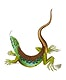 Ameiva Lizard or Great spotted Lizard illustration from The Naturalist's Miscellany (1789-1813) by George Shaw (1751-1813)