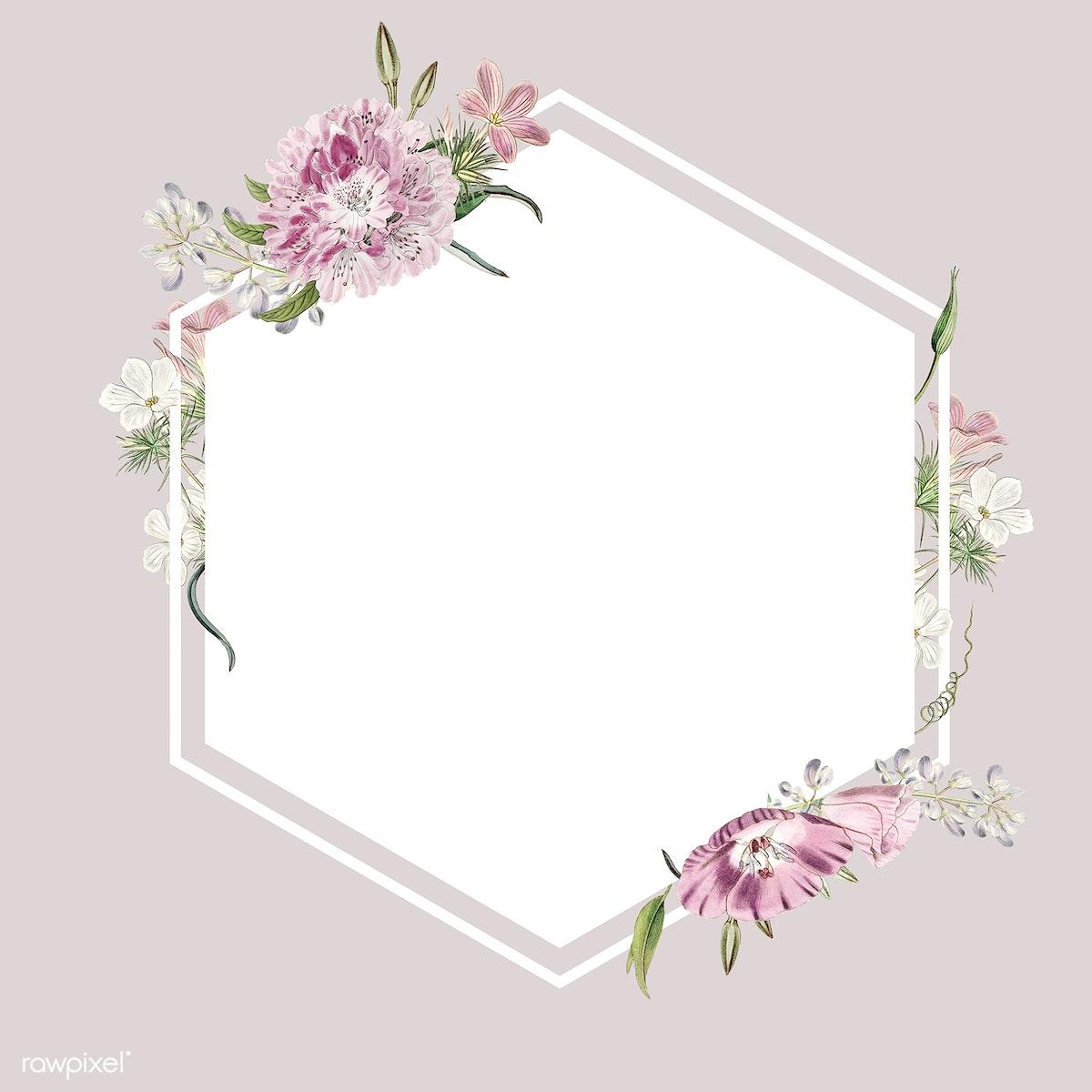 Floral Frame Design Royalty Free Stock Illustration 559407