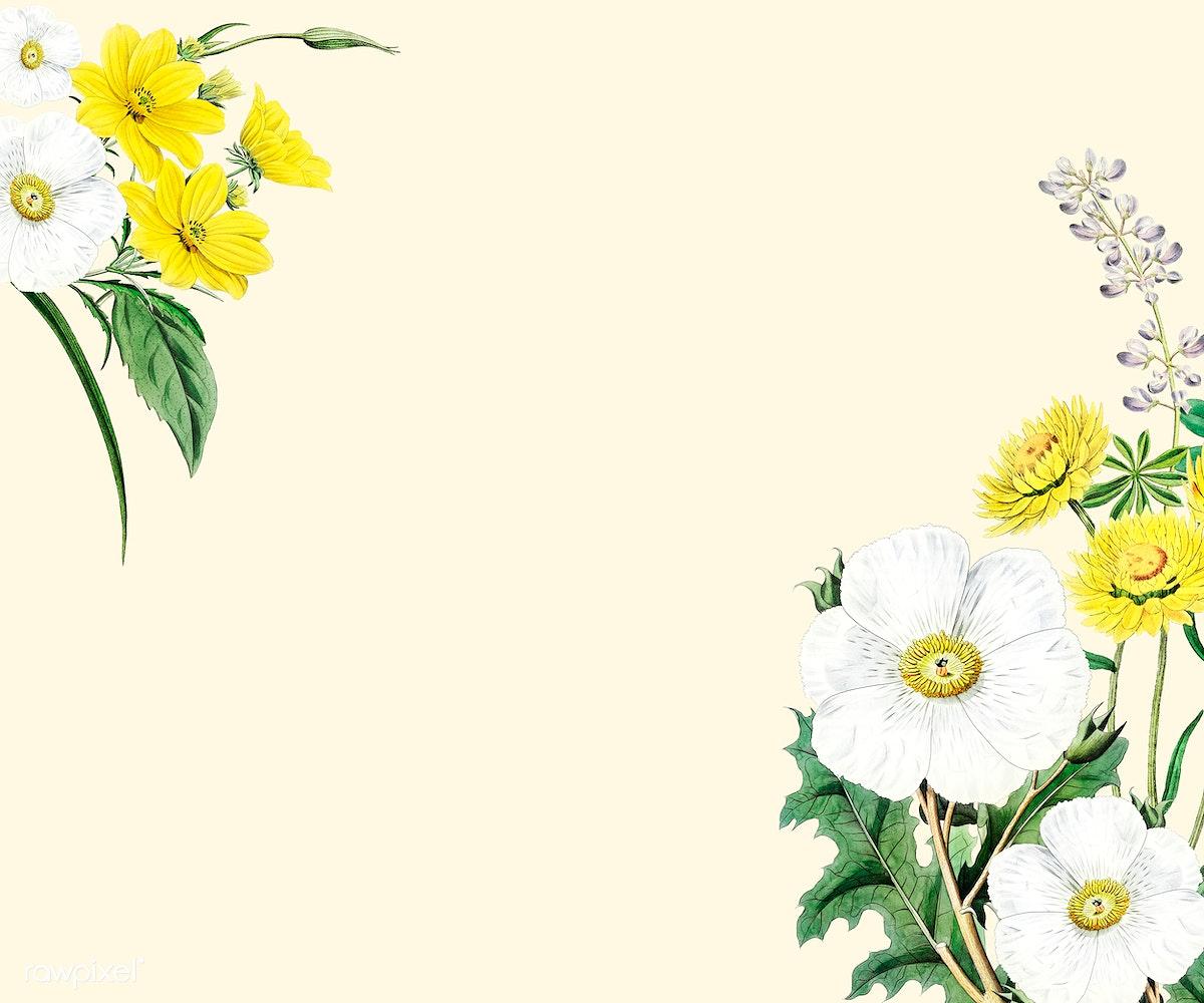 Flower Frame Design Royalty Free Stock Illustration 559359