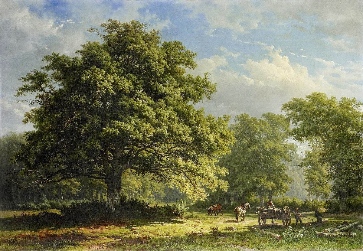 View in the Bentheim Forest by George Andries Roth Original from the Rijksmuseum. Digitally enhanced by rawpixel.
