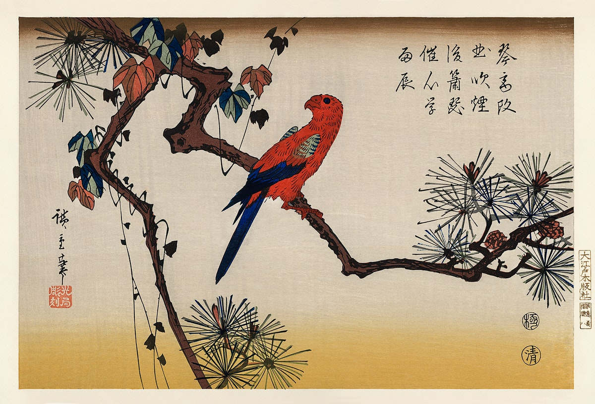 Ukiyo-e illustration, Macaw on Pine Branch by Utagawa Hiroshige, also known as Ando Hiroshige (1797-1858), a portrait of a…