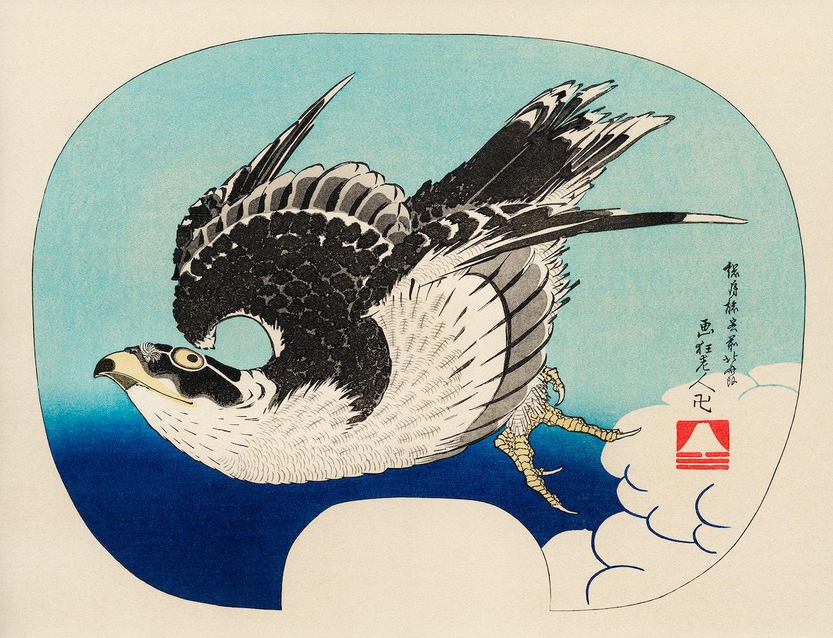 The ukiyo-e illustration, Hawk by Katsushika Hokusai (1849), a portrait of a flying hawk in the sky. Digitally enhanced from…