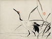 The ukiyo-e illustration of a Japanese crane by Mochizuki Gyokusen, drawn in the year 1891, a traditional portrait of an elegant Japanese crane. Digitally enhanced from our own original wood block print.