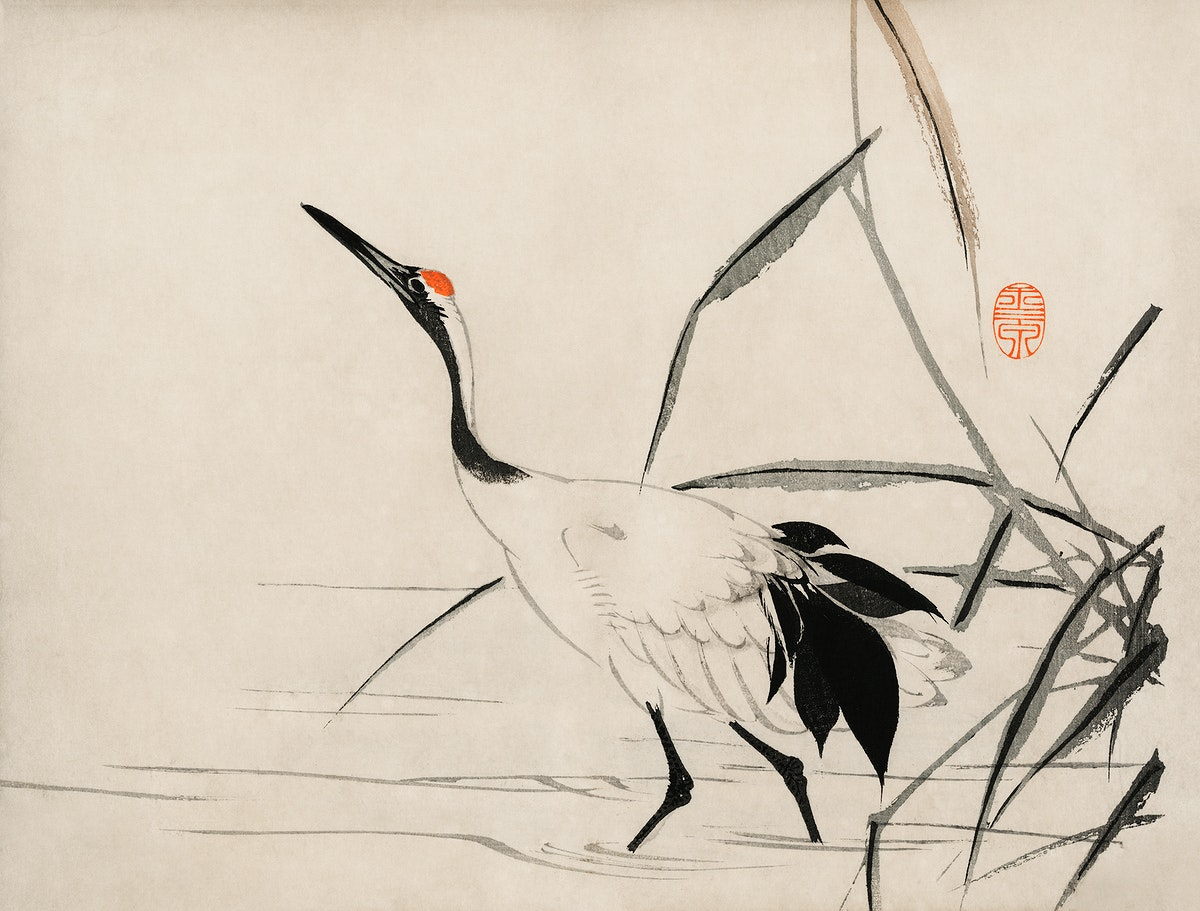 The ukiyo-e illustration of a Japanese crane by Mochizuki Gyokusen, drawn in the year 1891, a traditional portrait of an…