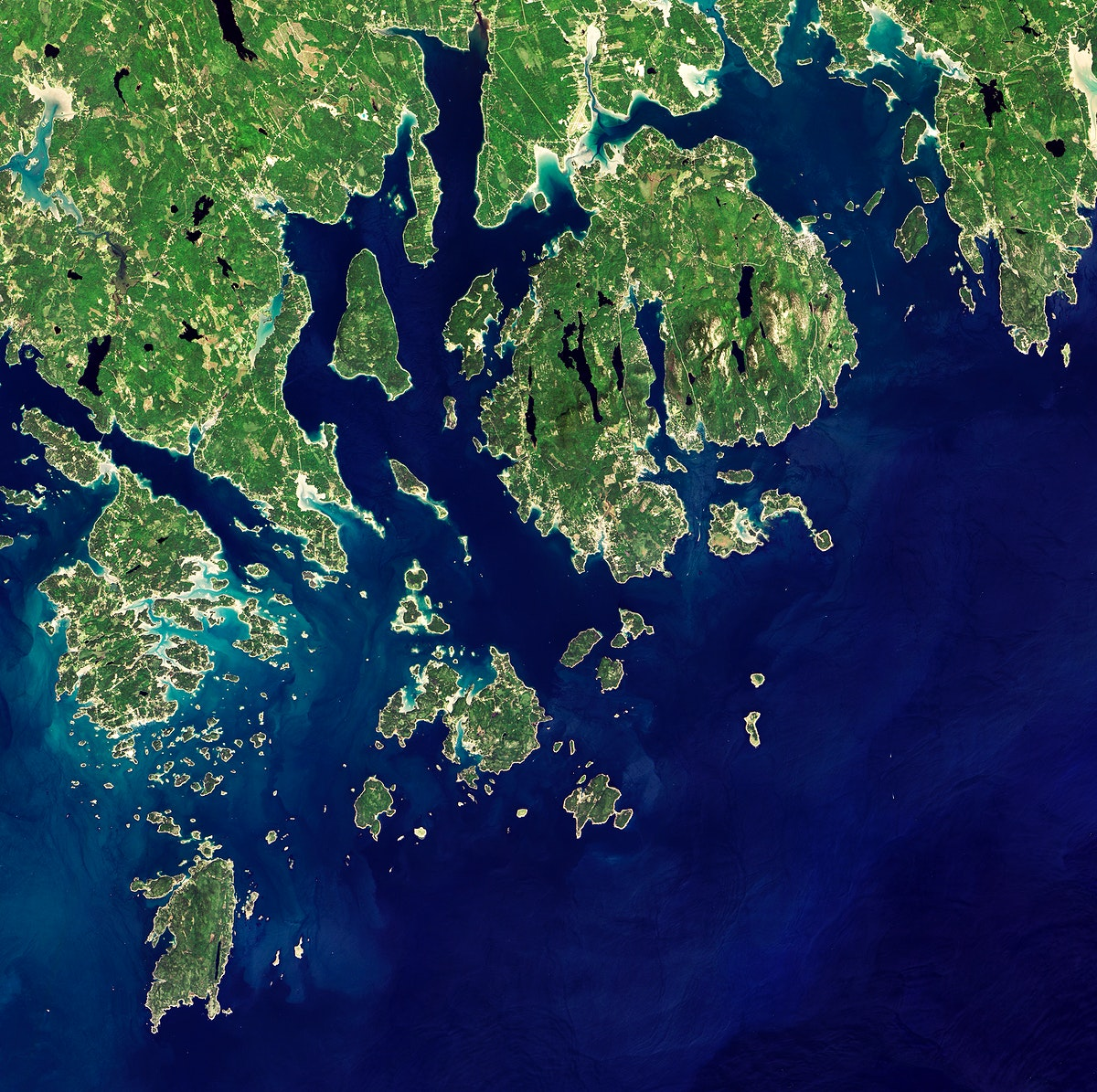 Acadia National Park is one of the most visited parks in America. Original from NASA. Digitally enhanced by rawpixel.