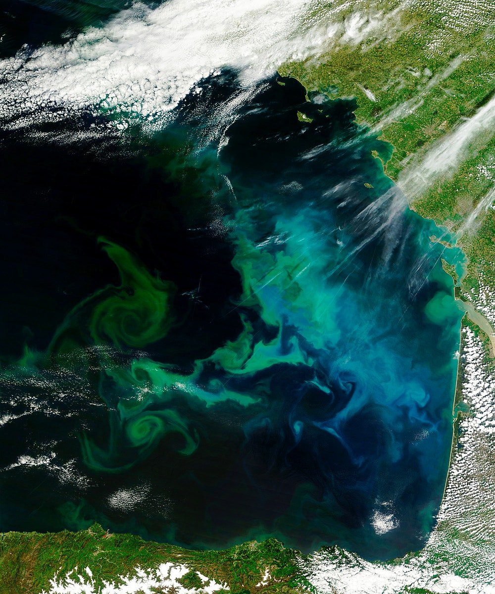 Phytoplankton bloom in the Bay of Biscay. Original from NASA. Digitally enhanced by rawpixel.