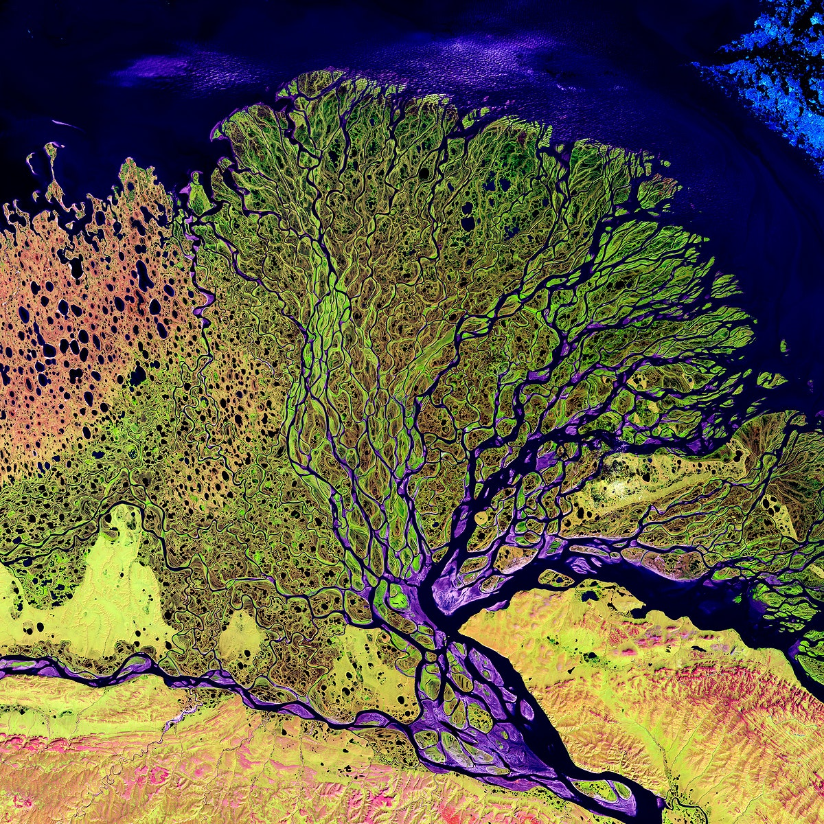 The Lena River, some 2,800 miles long, is one of the largest rivers in the world. Original from NASA. Digitally enhanced by…