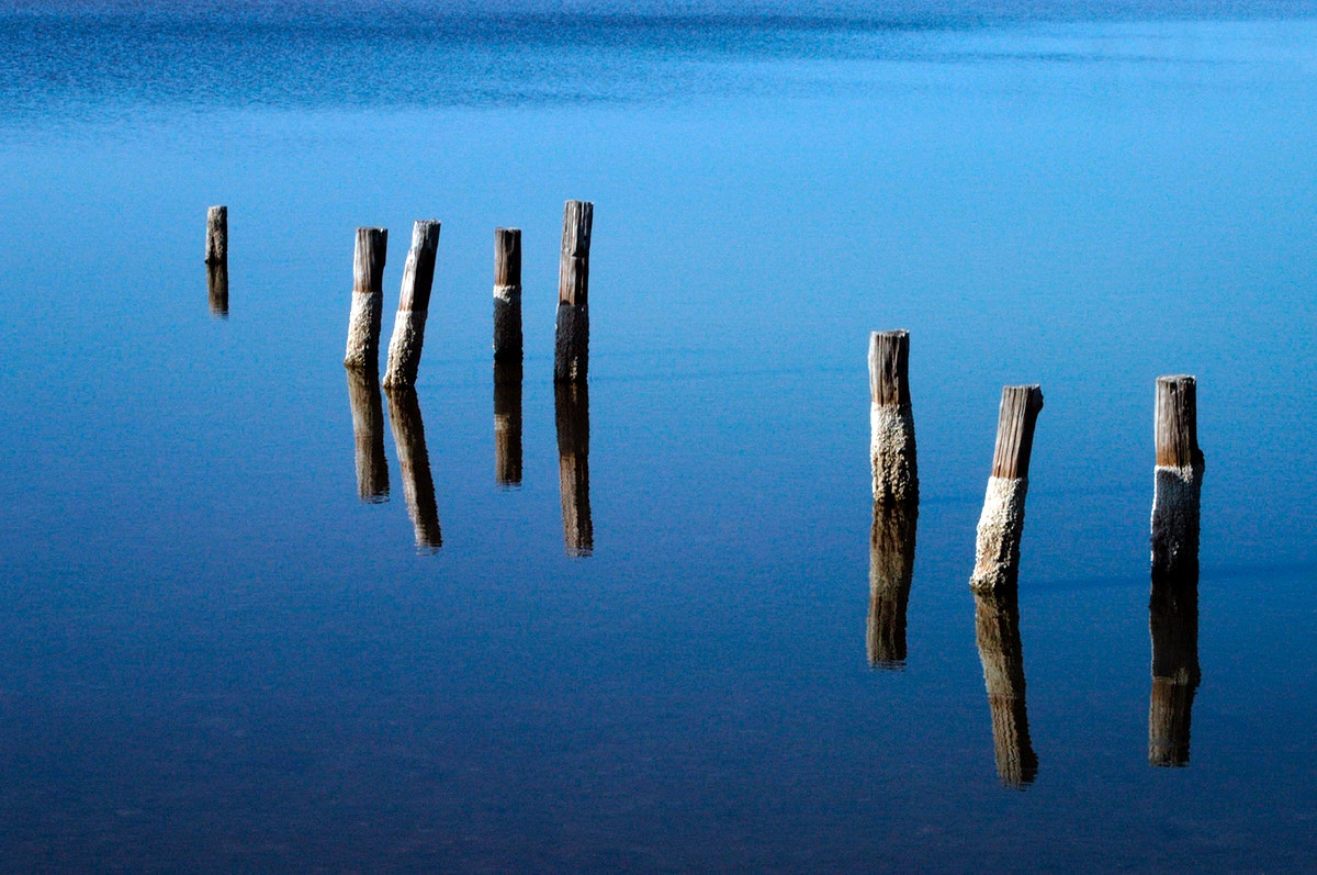 The remnant pilings of a long-gone dock appear to float in air due to their reflection in the blue, still water of a pond…