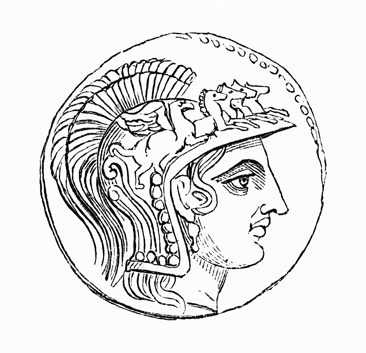 Vintage illustration of Side Portrait of a Greek Military Male